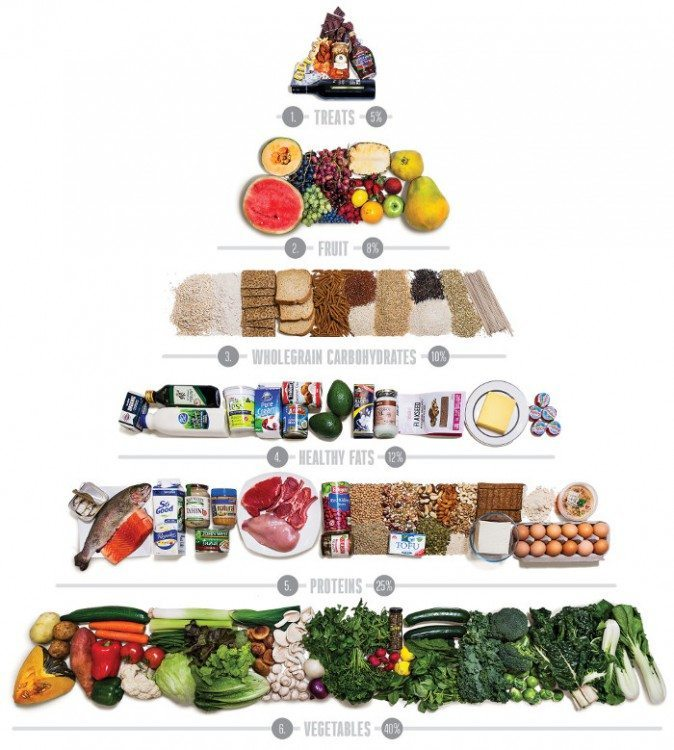 The new food pyramid jshealth for Australian modern cuisine