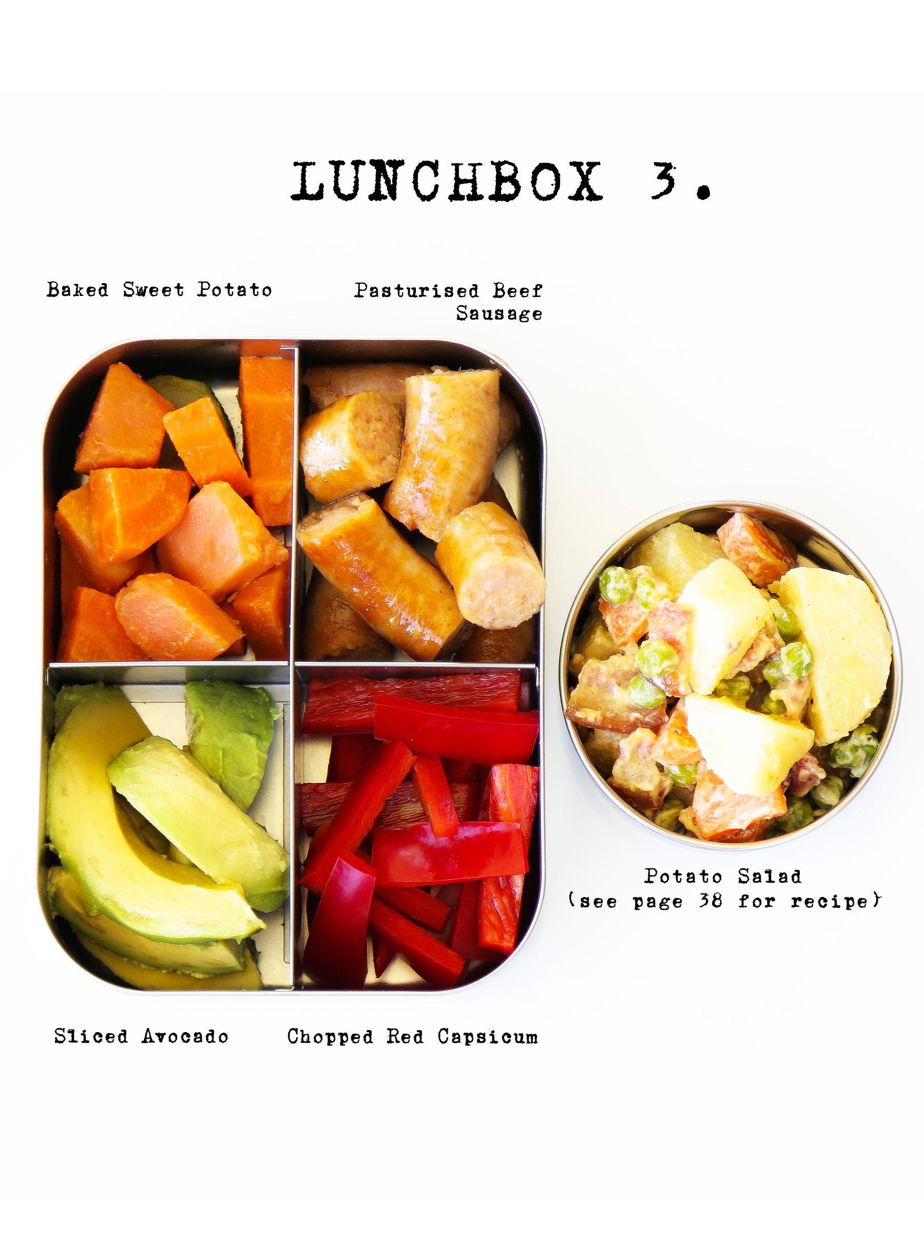 lunchbox3b